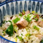 pork fried rice closeup