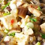 vegan mapo tofu closeup